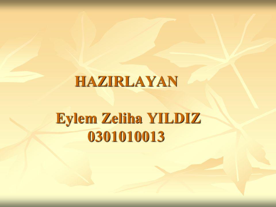 HAZIRLAYAN Eylem Zeliha YILDIZ 0301010013