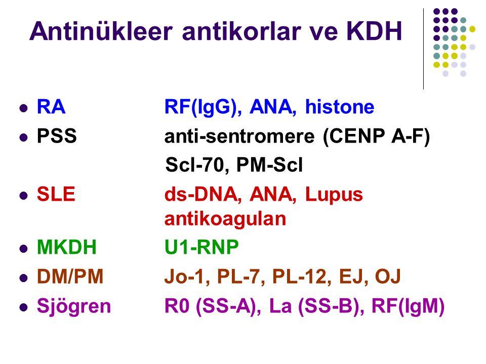 Antinükleer antikorlar ve KDH