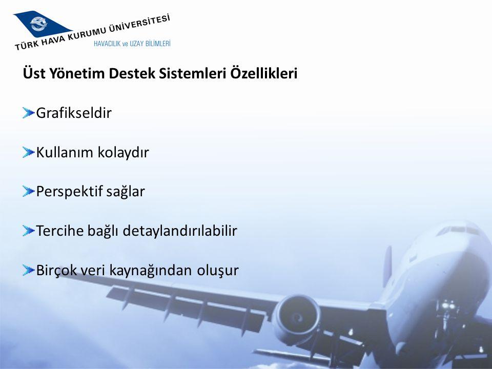 Üst Yönetim Destek Sistemleri Özellikleri