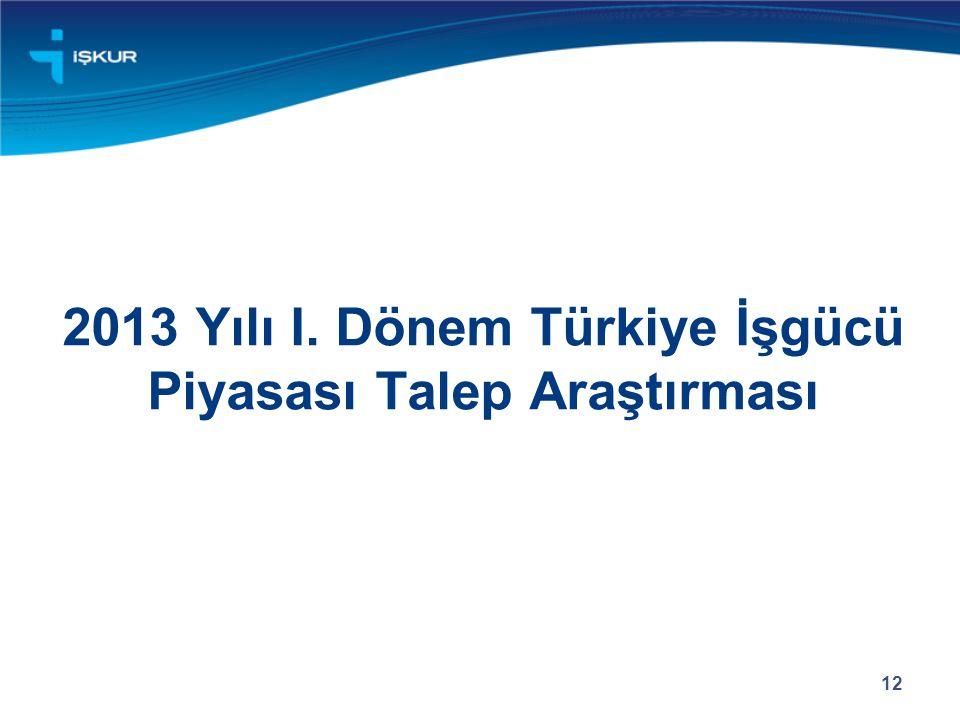 2013 Yılı I. Dönem Türkiye İşgücü Piyasası Talep Araştırması
