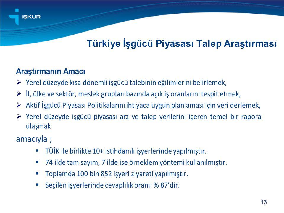 Türkiye İşgücü Piyasası Talep Araştırması