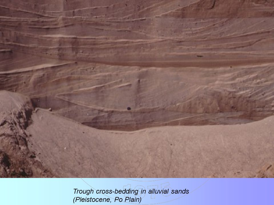 Trough cross-bedding in alluvial sands (Pleistocene, Po Plain)