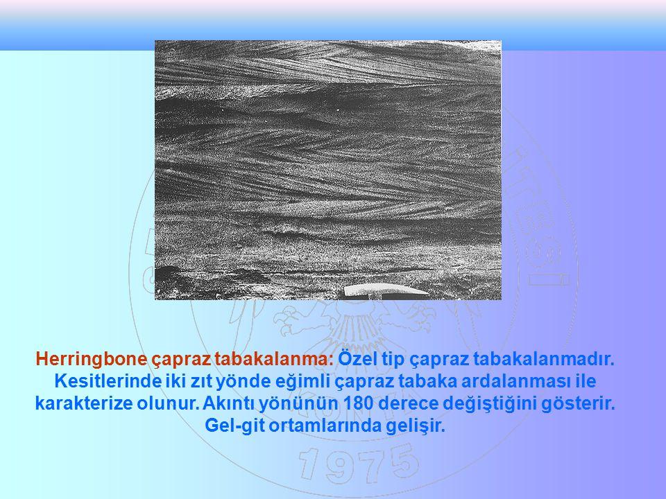 Herringbone çapraz tabakalanma: Özel tip çapraz tabakalanmadır