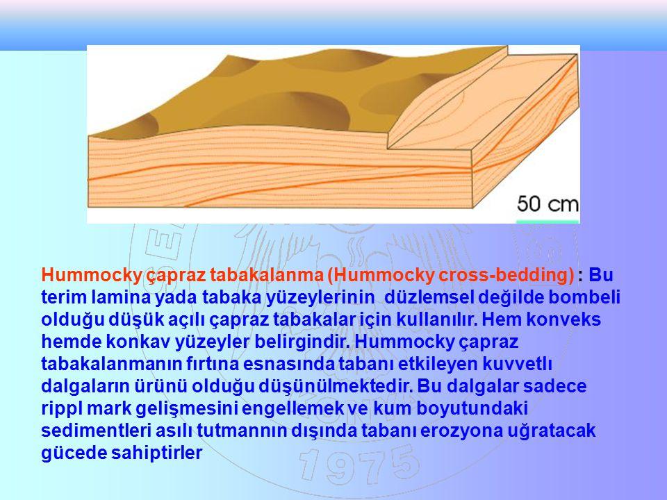 Hummocky çapraz tabakalanma (Hummocky cross-bedding) : Bu terim lamina yada tabaka yüzeylerinin düzlemsel değilde bombeli olduğu düşük açılı çapraz tabakalar için kullanılır.