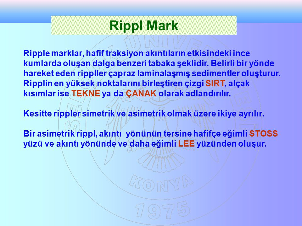 Rippl Mark