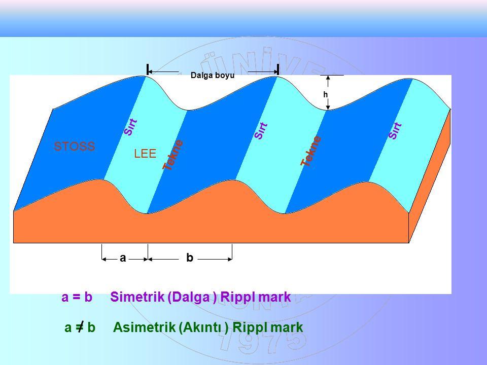 a = b Simetrik (Dalga ) Rippl mark