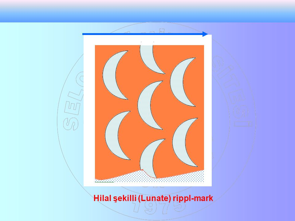 Hilal şekilli (Lunate) rippl-mark