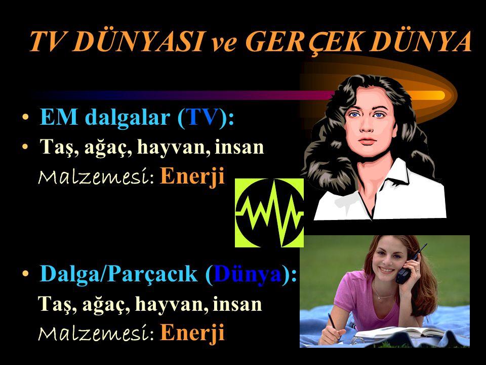 TV DÜNYASI ve GERÇEK DÜNYA