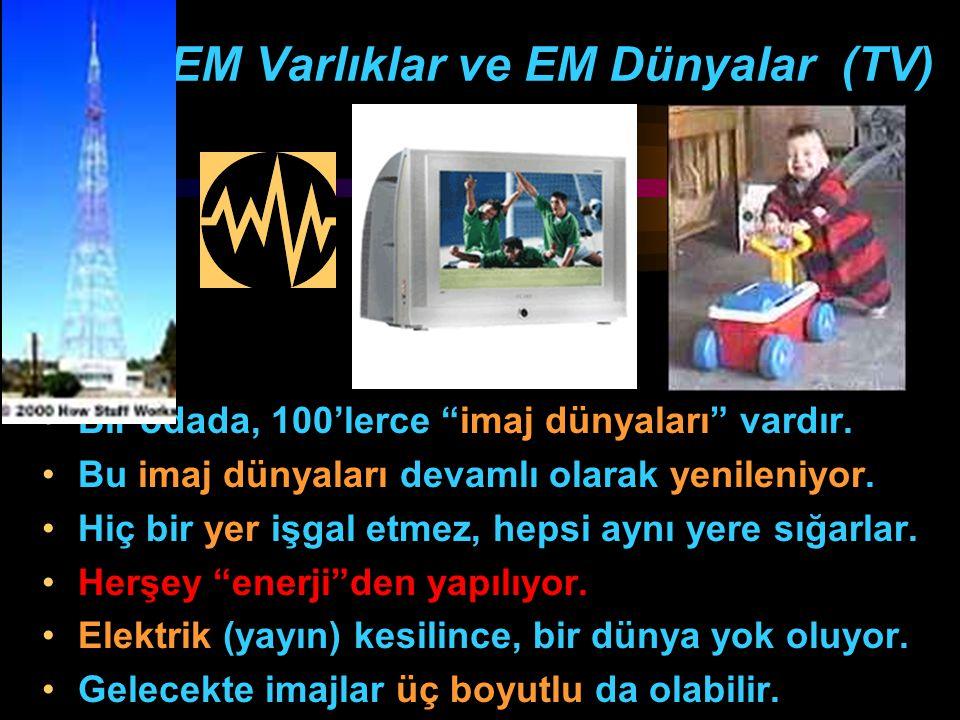 EM Varlıklar ve EM Dünyalar (TV)