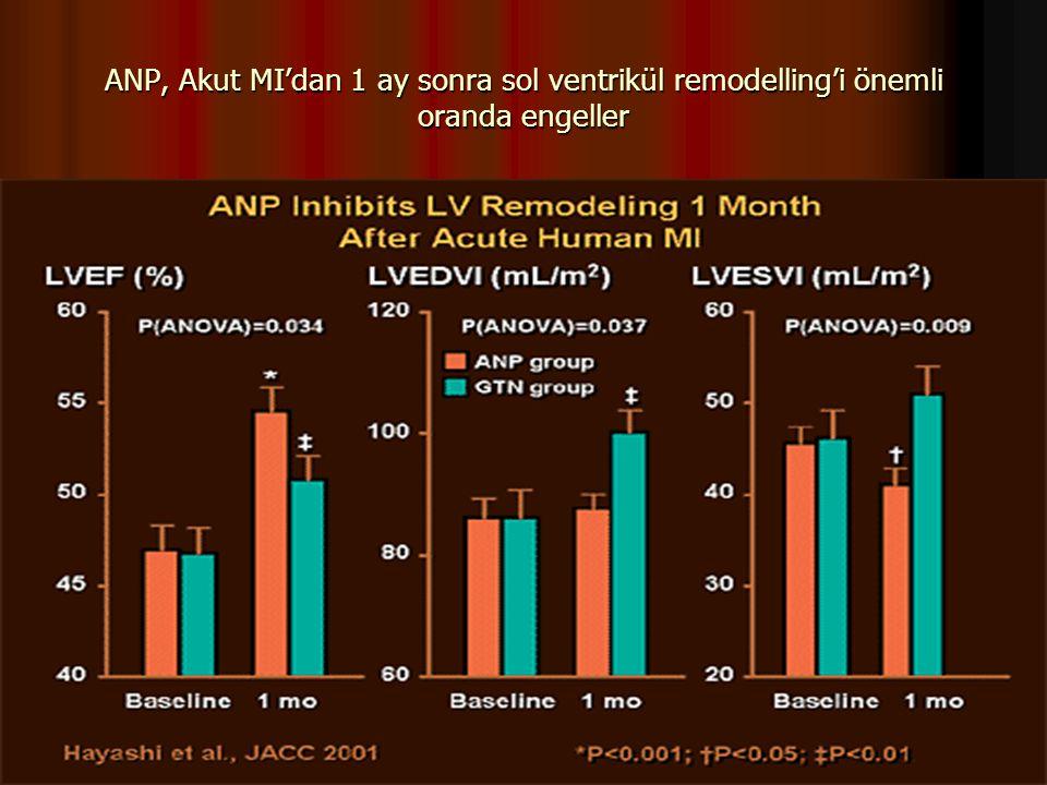 ANP, Akut MI'dan 1 ay sonra sol ventrikül remodelling'i önemli oranda engeller