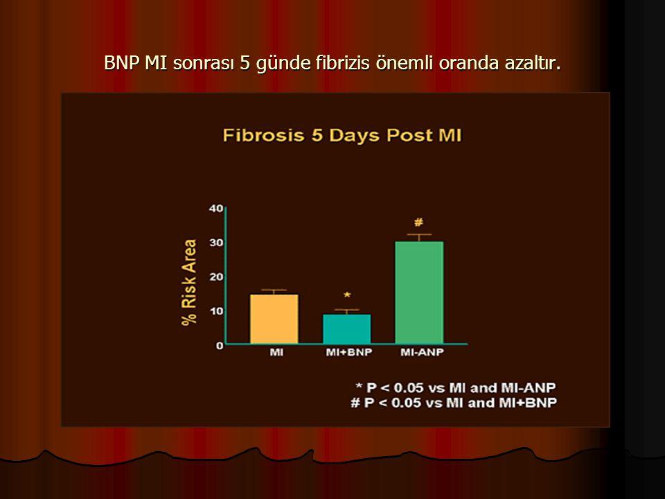 BNP MI sonrası 5 günde fibrizis önemli oranda azaltır.