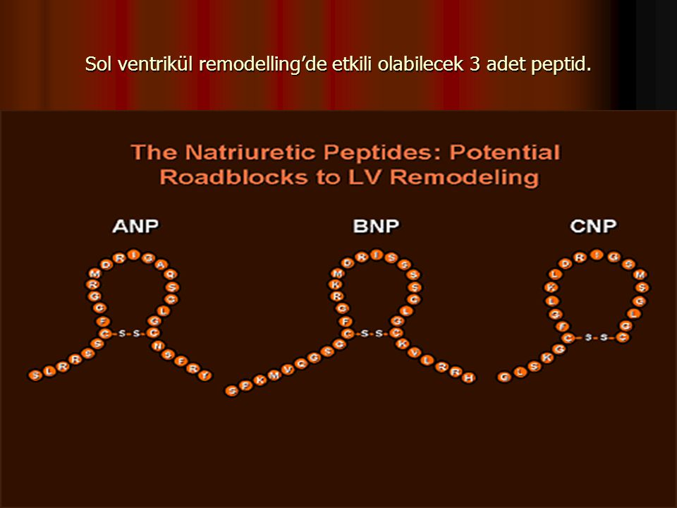 Sol ventrikül remodelling'de etkili olabilecek 3 adet peptid.