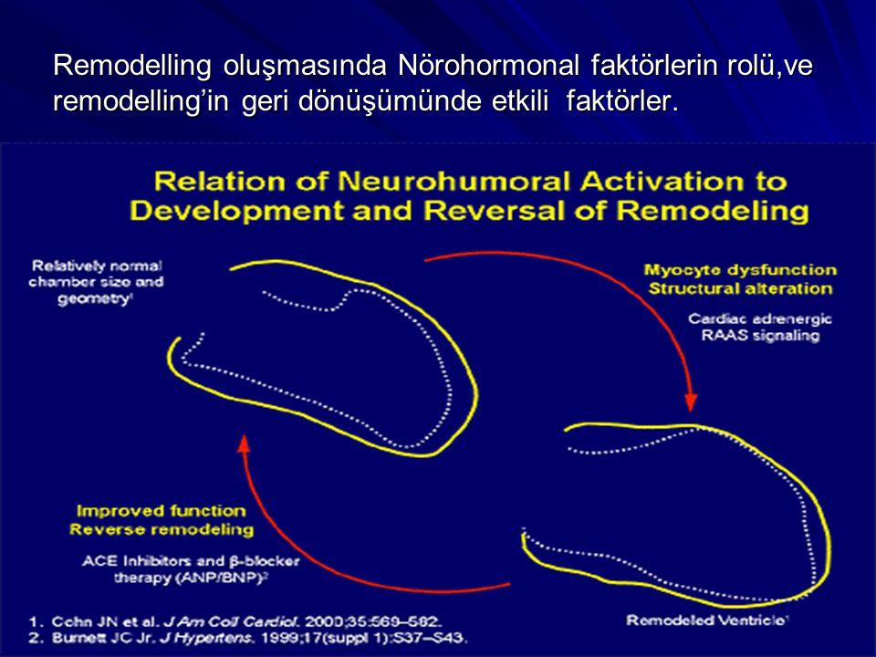 Remodelling oluşmasında Nörohormonal faktörlerin rolü,ve remodelling'in geri dönüşümünde etkili faktörler.