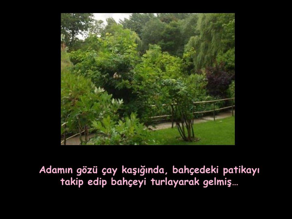Adamın gözü çay kaşığında, bahçedeki patikayı takip edip bahçeyi turlayarak gelmiş…