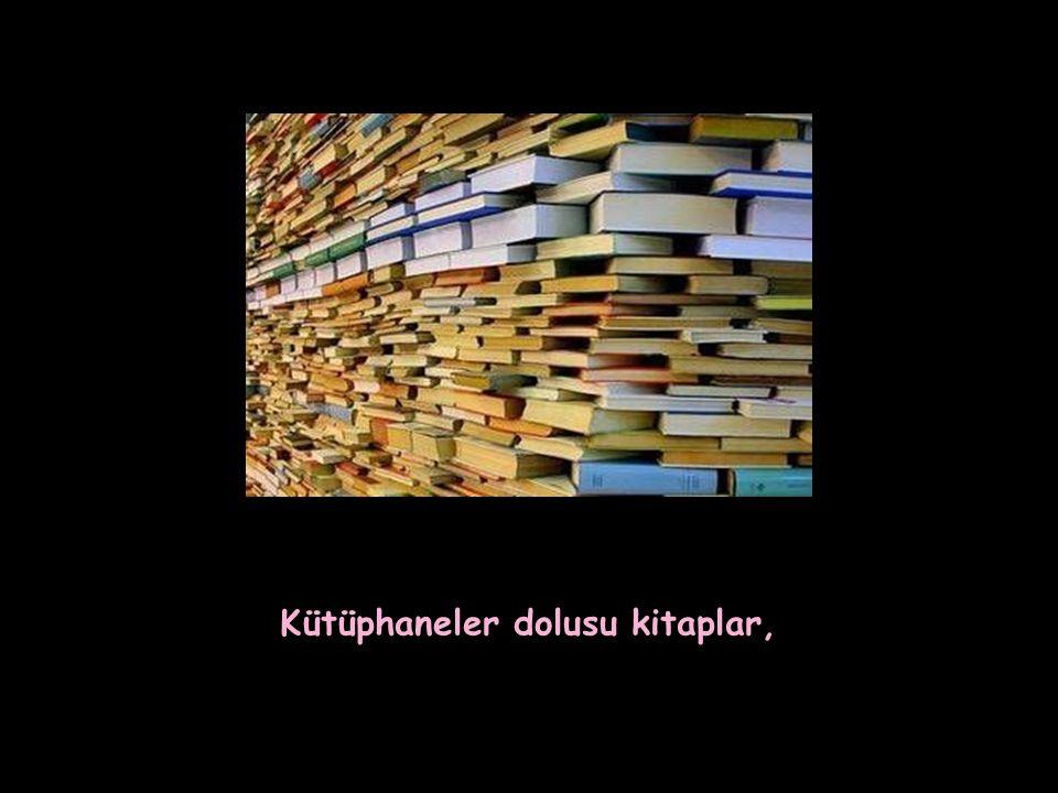 Kütüphaneler dolusu kitaplar,