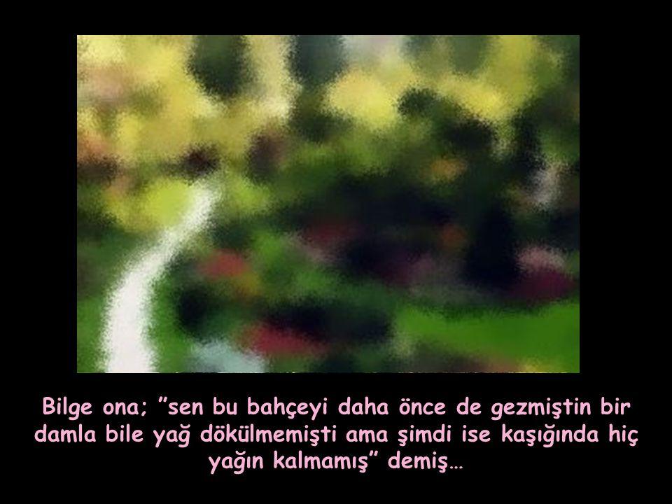 Bilge ona; sen bu bahçeyi daha önce de gezmiştin bir damla bile yağ dökülmemişti ama şimdi ise kaşığında hiç yağın kalmamış demiş…
