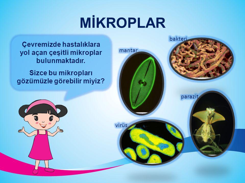 MİKROPLAR bakteri. Çevremizde hastalıklara yol açan çeşitli mikroplar bulunmaktadır. Sizce bu mikropları gözümüzle görebilir miyiz