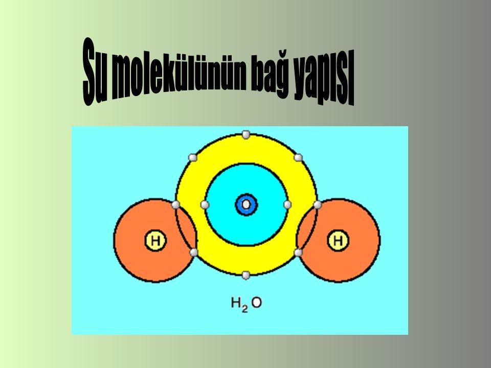 Su molekülünün bağ yapısı