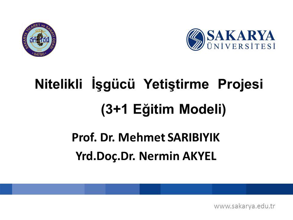 Nitelikli İşgücü Yetiştirme Projesi (3+1 Eğitim Modeli)
