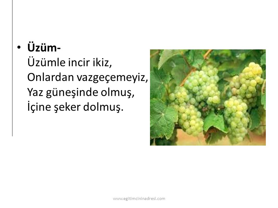 Üzüm- Üzümle incir ikiz, Onlardan vazgeçemeyiz, Yaz güneşinde olmuş, İçine şeker dolmuş.