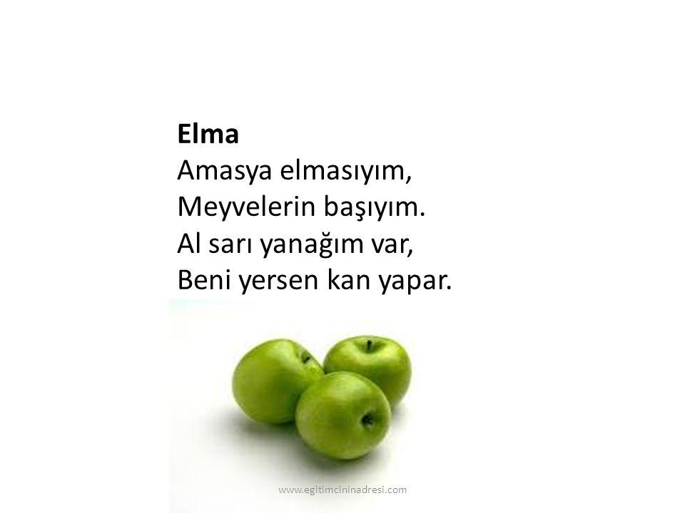 Elma Amasya elmasıyım, Meyvelerin başıyım