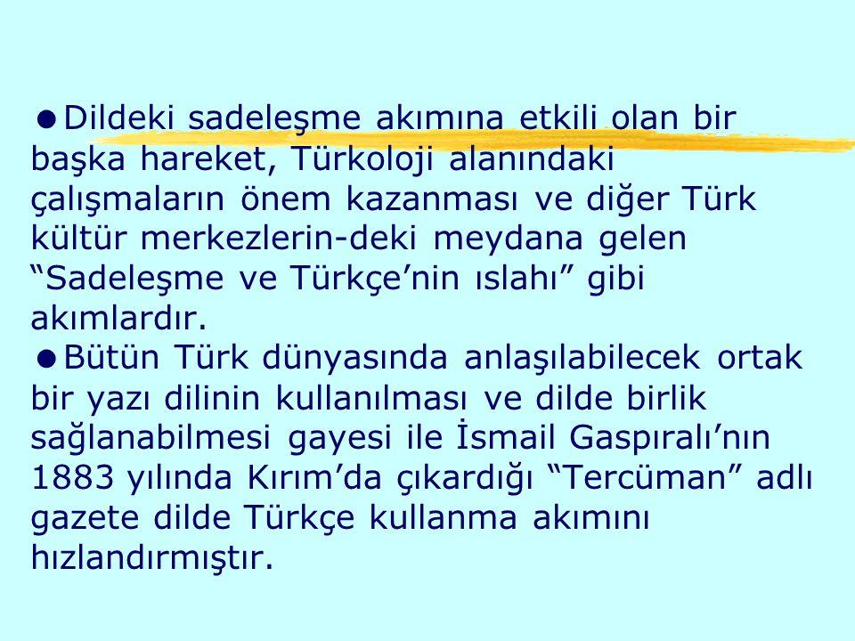 Dildeki sadeleşme akımına etkili olan bir başka hareket, Türkoloji alanındaki çalışmaların önem kazanması ve diğer Türk kültür merkezlerin-deki meydana gelen Sadeleşme ve Türkçe'nin ıslahı gibi akımlardır.