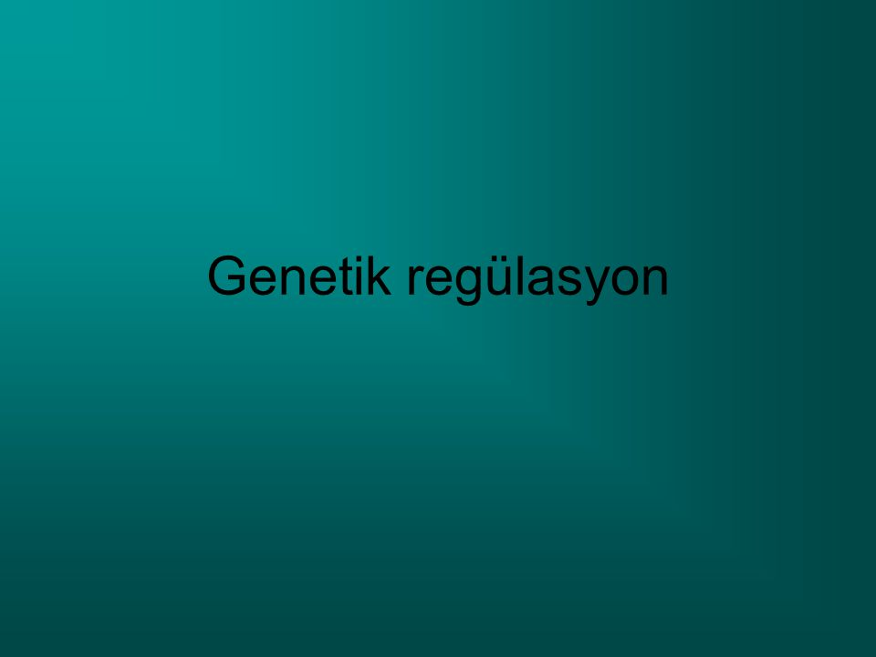 Genetik regülasyon