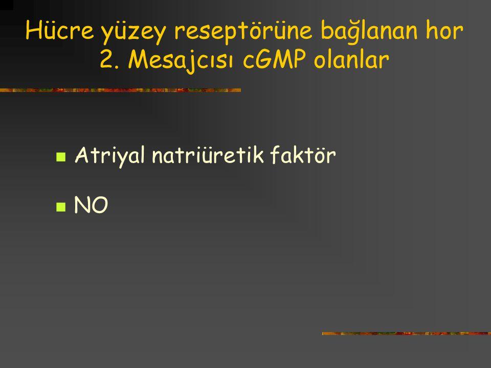 Hücre yüzey reseptörüne bağlanan hor 2. Mesajcısı cGMP olanlar