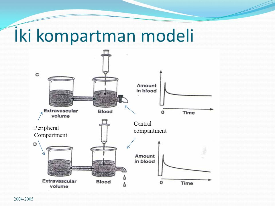 İki kompartman modeli Central Peripheral Compartment compantment