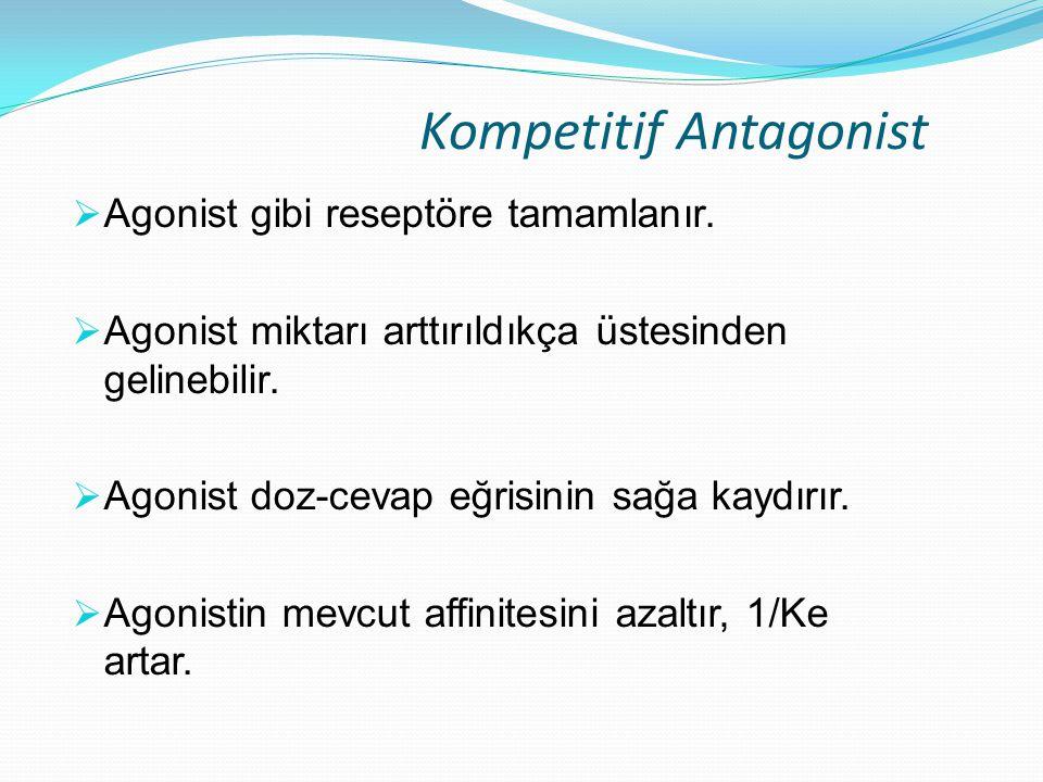 Kompetitif Antagonist