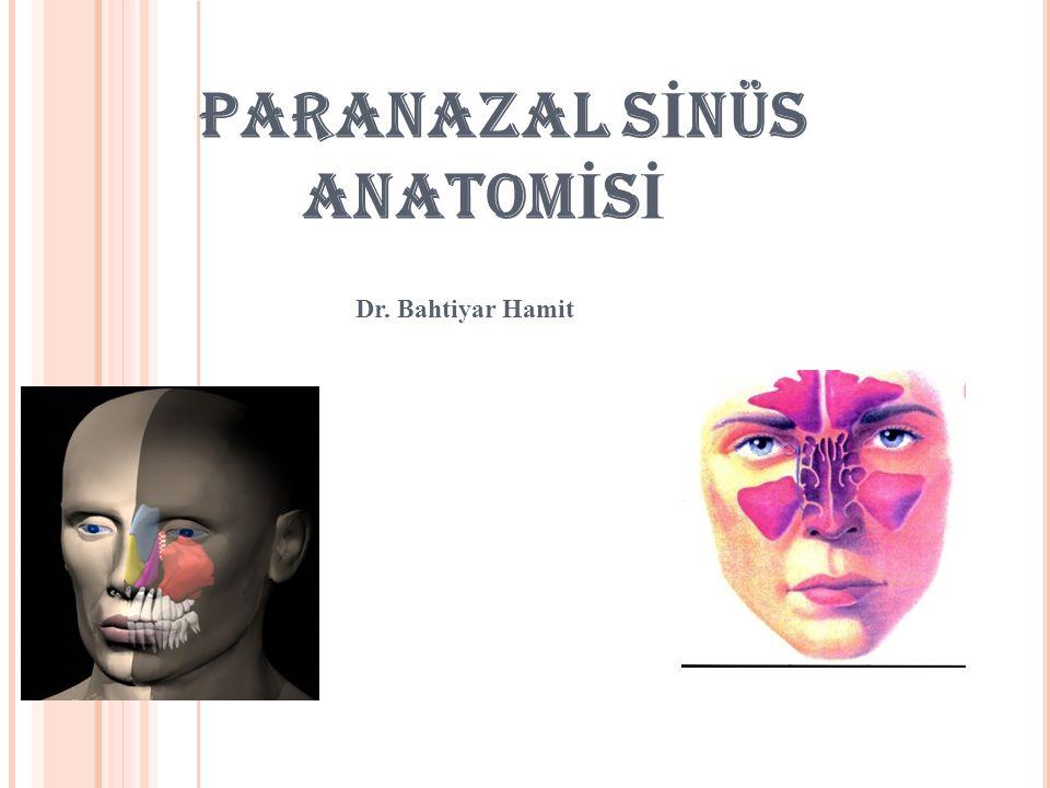 PARANAZAL SİNÜS ANATOMİSİ