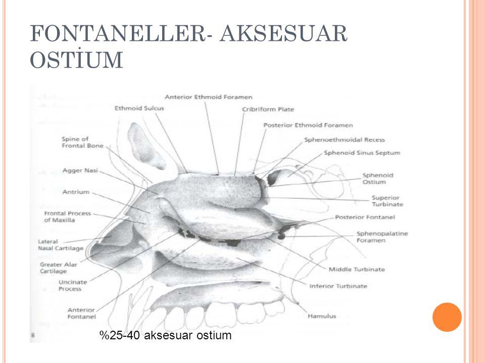FONTANELLER- AKSESUAR OSTİUM
