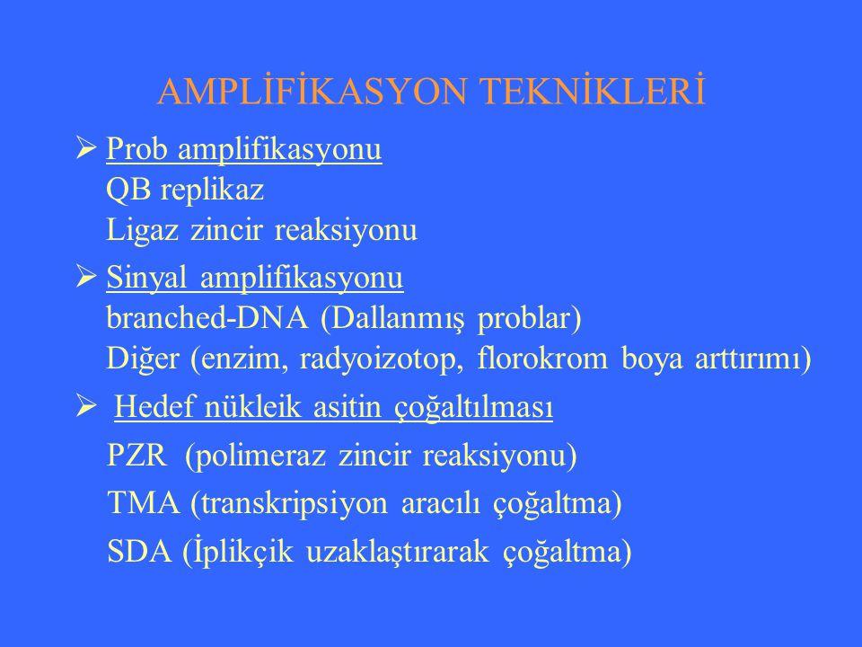AMPLİFİKASYON TEKNİKLERİ