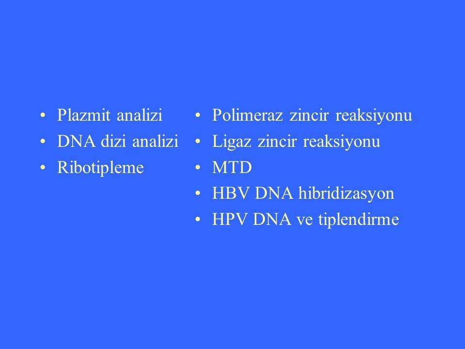 Plazmit analizi DNA dizi analizi. Ribotipleme. Polimeraz zincir reaksiyonu. Ligaz zincir reaksiyonu.