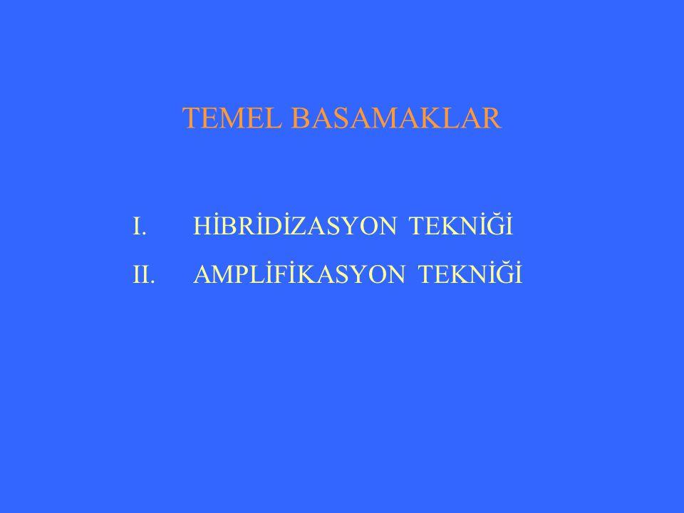 TEMEL BASAMAKLAR HİBRİDİZASYON TEKNİĞİ AMPLİFİKASYON TEKNİĞİ