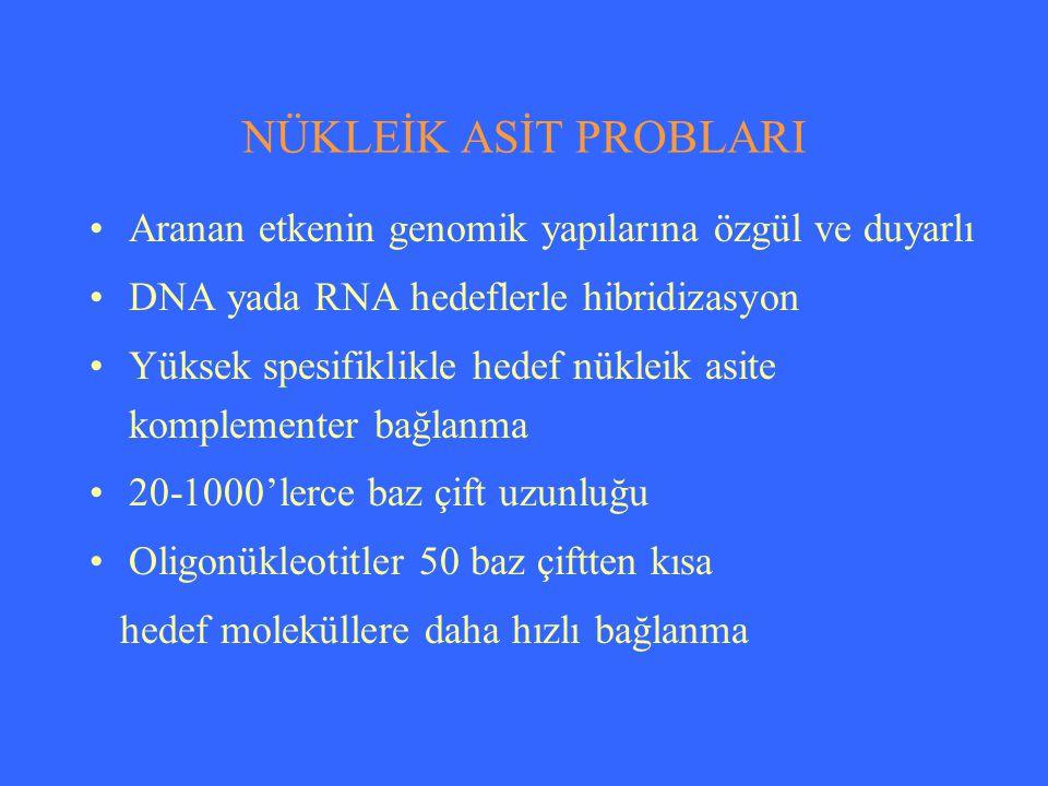 NÜKLEİK ASİT PROBLARI Aranan etkenin genomik yapılarına özgül ve duyarlı. DNA yada RNA hedeflerle hibridizasyon.