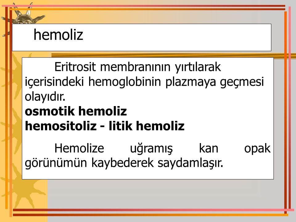hemoliz osmotik hemoliz hemositoliz - litik hemoliz