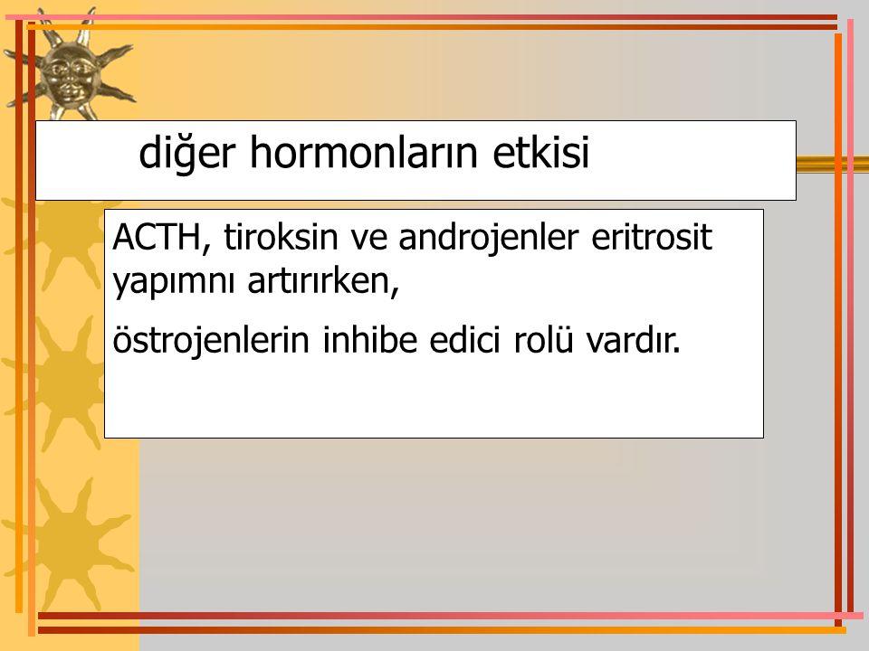 diğer hormonların etkisi