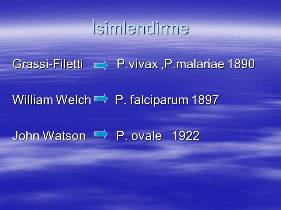 İsimlendirme Grassi-Filetti P.vivax ,P.malariae 1890