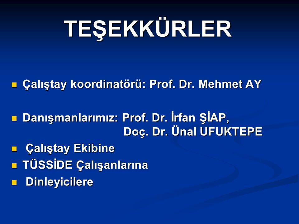 TEŞEKKÜRLER Çalıştay koordinatörü: Prof. Dr. Mehmet AY