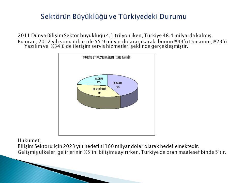 Sektörün Büyüklüğü ve Türkiyedeki Durumu
