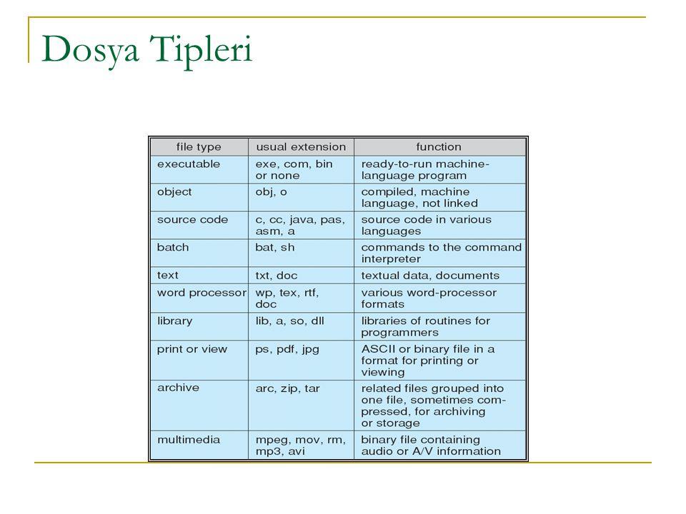 Dosya Tipleri