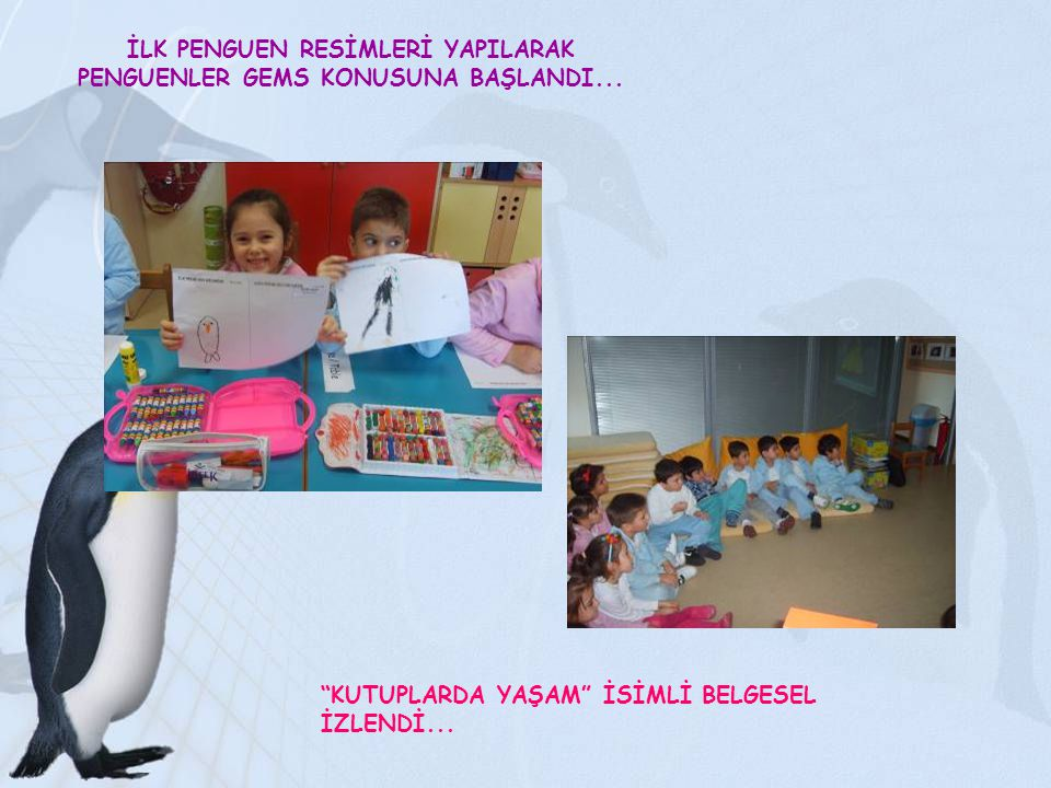 İLK PENGUEN RESİMLERİ YAPILARAK PENGUENLER GEMS KONUSUNA BAŞLANDI...