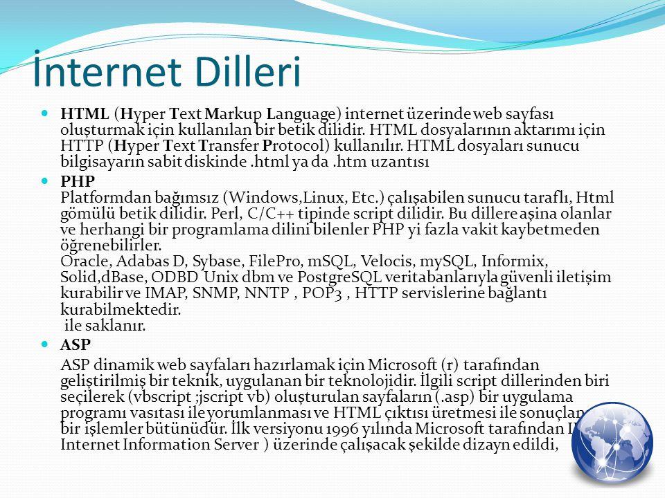 İnternet Dilleri