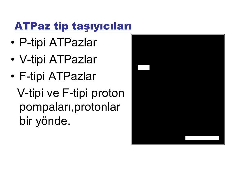 ATPaz tip taşıyıcıları