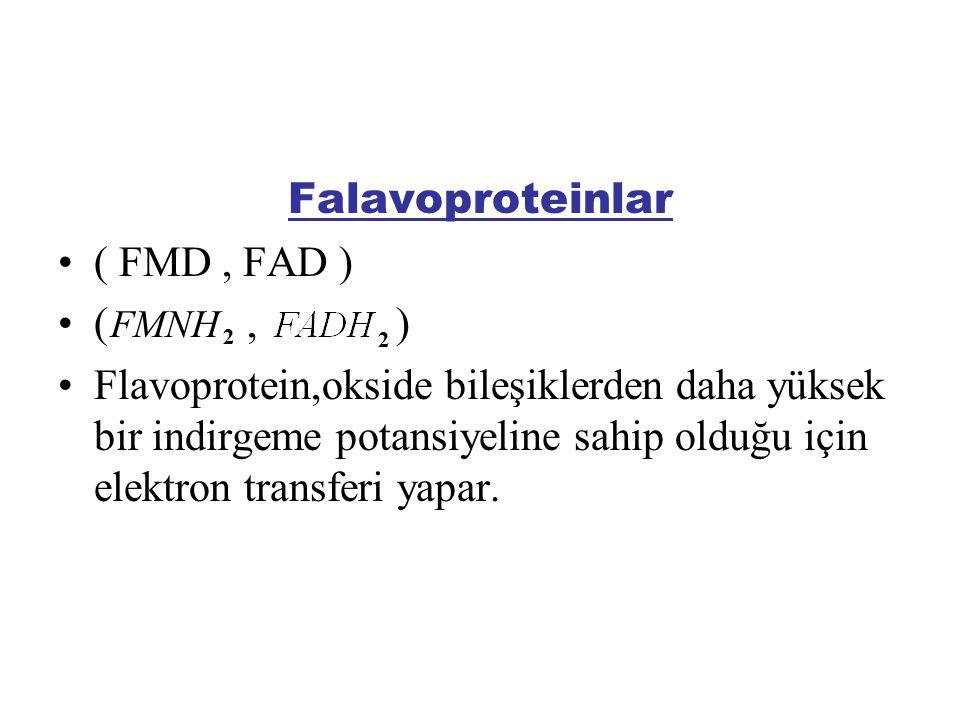 Falavoproteinlar ( FMD , FAD ) ( , )
