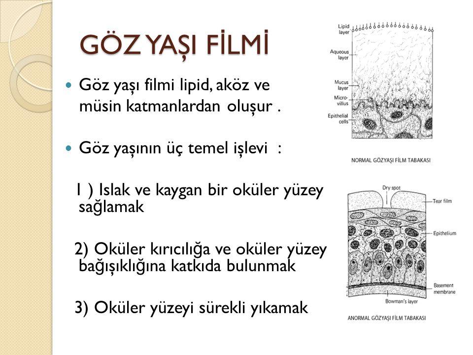 GÖZ YAŞI FİLMİ Göz yaşı filmi lipid, aköz ve