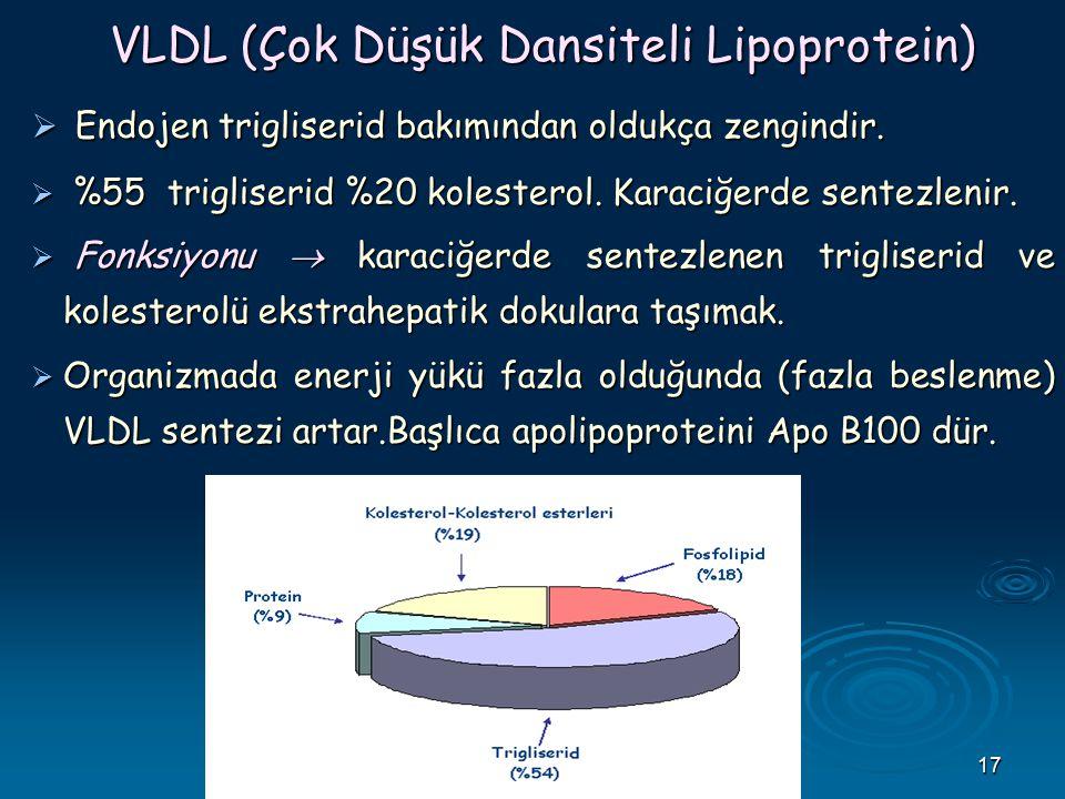VLDL (Çok Düşük Dansiteli Lipoprotein)