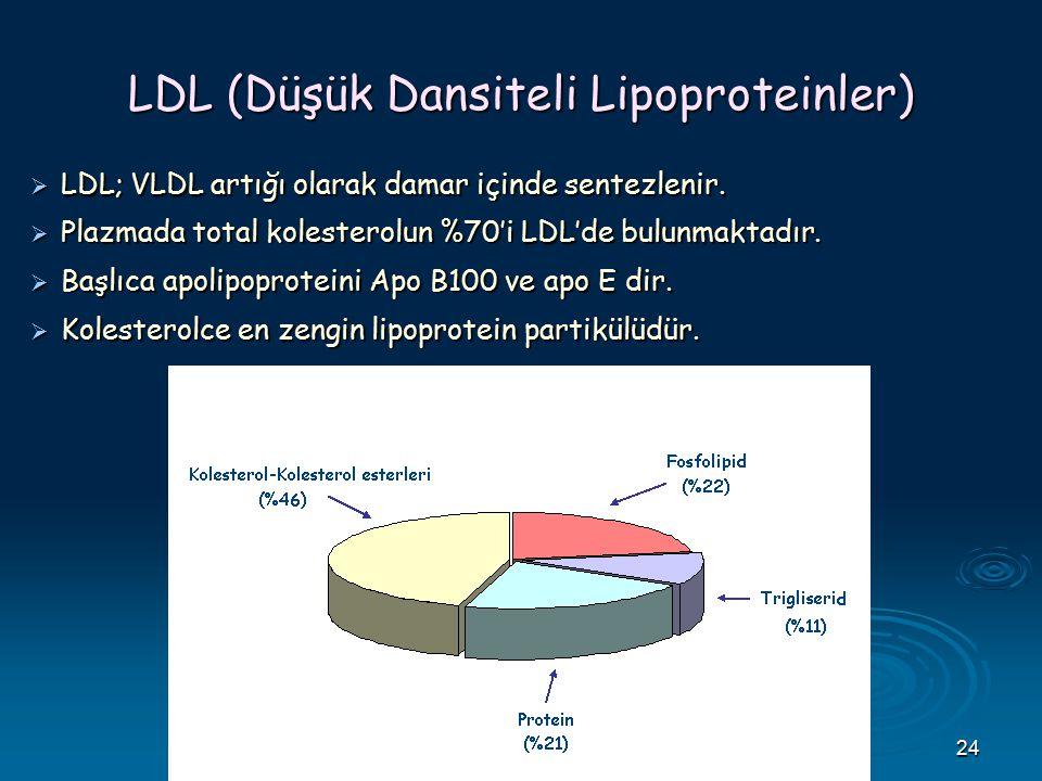 LDL (Düşük Dansiteli Lipoproteinler)