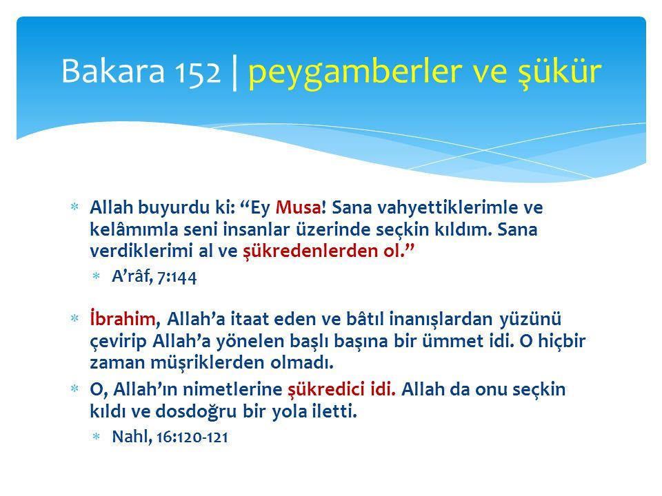 Bakara 152 | peygamberler ve şükür